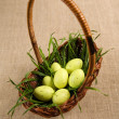 Basket with Easter eggs and grass — Stock Photo