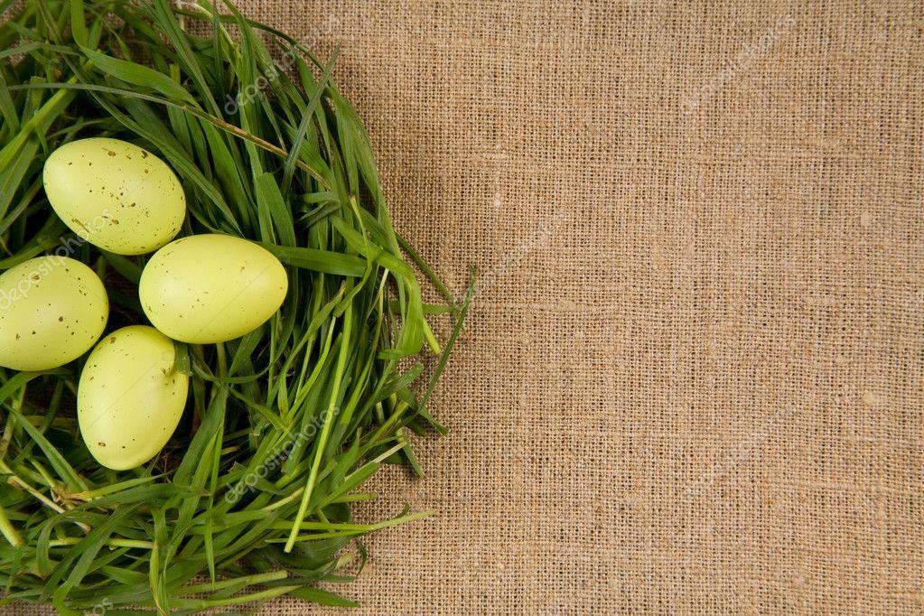 Как сделать позеленей траву
