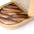Sprats a transparent cover - Stock Photo
