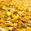 Background of fallen autumn foliage — Stock Photo