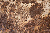 Background of rusty surface — Stock Photo