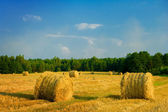 Bale of straw on a field — Stock Photo