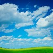 Field with sky — Stock Photo
