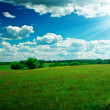 Green field with beauty blue sky and sun - Stock Photo