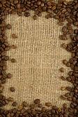 Coffee grains on a sacking — Stock Photo