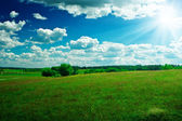 Green field with beauty blue sky and sun — Photo