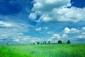 Weath and cloudy sky — Stock Photo