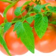 Composition of tomato with copyspace — Stock Photo #1080672
