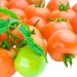 Composition of tomato — Stock Photo