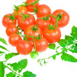 Comsition of tomato — Stock Photo