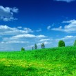 Green meadow with beauty blue sky - Stock Photo