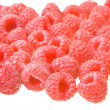 Raspberryes on white — Stock Photo #1086739