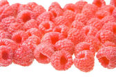 Raspberryes on white — Stock Photo