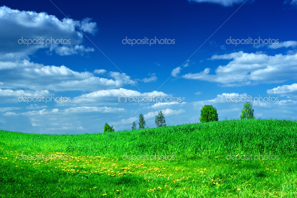 Green meadow with beauty blue sky — Stock Photo © mihalec ...
