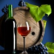 Composition from grapes and red wine - Stock Photo
