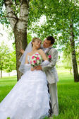 The groom and the bride near a tree — Photo
