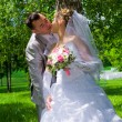 The wedding pair kisses near a tree — Photo
