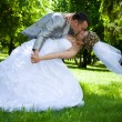 Wedding couple kiss in the park — 图库照片