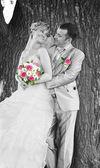 Wedding couple on — Stock Photo