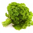 Isolated big banch of a parsley — Stock Photo