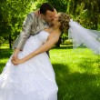 Foto Stock: The groom holds the bride in park