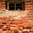 Old window in a old brick wall — Stock Photo