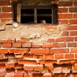 Old window in a old brick wall - Stock Photo