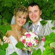 The groom and the bride in foliage — Stock Photo