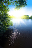 River and sun — Stock Photo