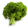 Bunch of a parsley isolated — Stock fotografie