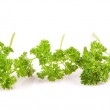 Isolated banches of parsley — Stock Photo #2464816