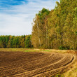 Stock Photo: Ploughed field at edge of forest