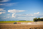 Agricultural action on the field — Stock Photo