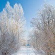 Winter alley — Stock Photo