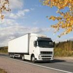 caminhão branco na estrada de outono — Foto Stock