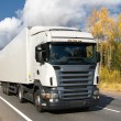 White truck on highway — Stock Photo #1007566