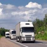 Caravan of white trucks — Stock Photo