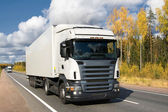 White truck on highway — Stock Photo