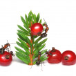 Ants christmas troubles — Stock Photo