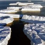 Tongue of icebergs in Antarctica — Stock Photo
