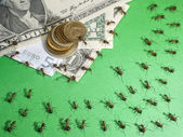 Financial crisis in anthill — Stock Photo