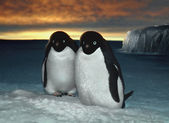 Adelie penguins, preparing the nest — Stock Photo