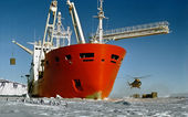 Arrival of antarctic expedition — Stock Photo