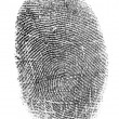 Royalty-Free Stock Photo: Black fingerprint isolated on white