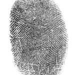 Black fingerprint isolated on white — Stock Photo #1006461