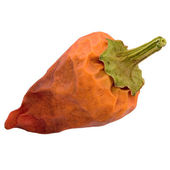 Red pepper on a white — Stock Photo