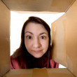 Royalty-Free Stock Photo: Female portrait through  cardboard box
