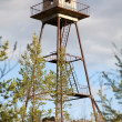 Stock Photo: Thrown watchtower in wood