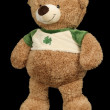 Toy brown soft bear black background - Stock Photo