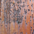 Stock Photo: Metal old rusty surface